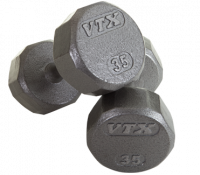 12 Sided Solid Gray Dumbbells 55-100 lbs