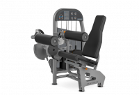 Leg Curl/Extension VY-2040
