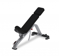Adjustable Incline Bench Model 9NP-B7519