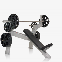 EPIC Olympic Incline Bench - F214