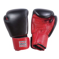 PowerForce Boxing Gloves (pair)