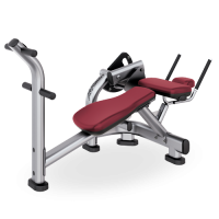 Signature Series Ab Crunch Bench