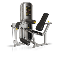 Seated Leg Extension/Leg Curl CT Line
