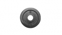 Standard Olympic Plate (Uncalibrate, KG)