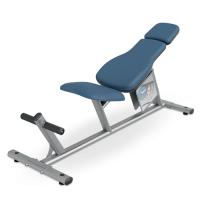 Ab Curl Bench