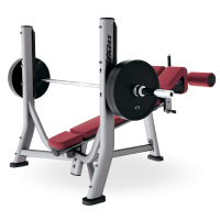 Signature Series Olympic Decline Bench