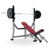 Signature Series Olympic Incline Bench