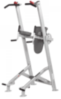 HF-5962 Fitness Tree