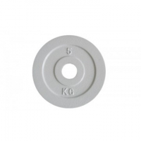 Calibrated Olympic Iron Plate (Exact Weight in KG)