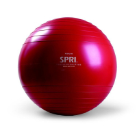 Professional Plus Xercise Ball™ - Various