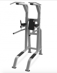 Pull-Up/Dip/Leg Raise Model 9NP-B7511