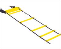 Smart Ladder