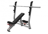 Incline Bench Press Model 9NP-B7203