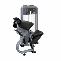 Discovery Series Bicep Curl DSL204